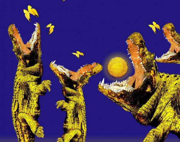 Jane Sager Crocs Butterflies Digital artwork 100x100cm 1